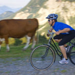 Mountainbiken Nassfeld Hermagor