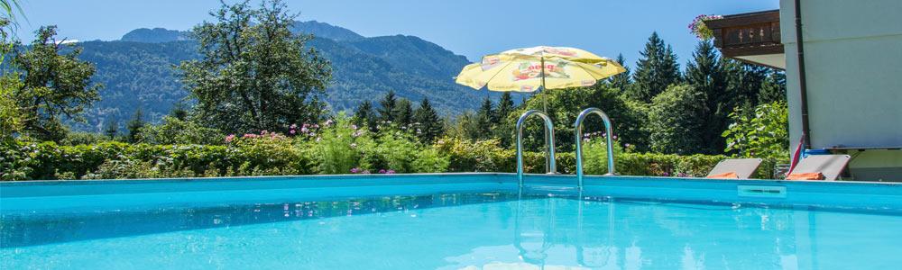 Schwimmbad Ferienhaus Waldhof