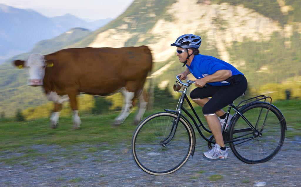downhill mountainbike Nassfeld Carinthia