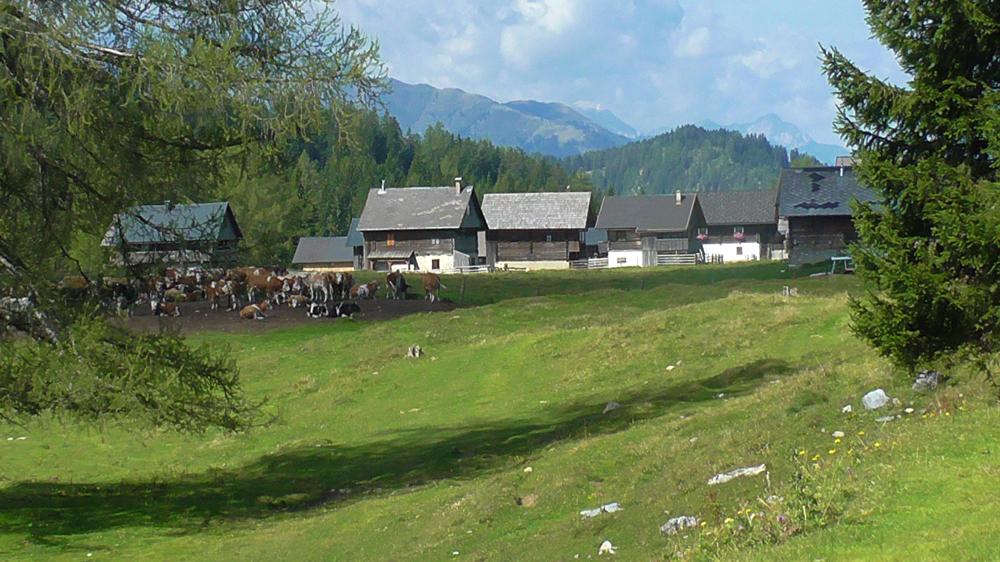Egger Alm Hermagor Carinthia
