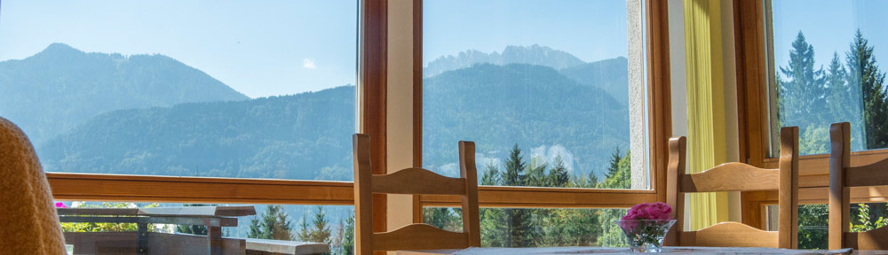 wintergarden kitchen of the apartment Wulfenia apartments Waldhof in Carinthia