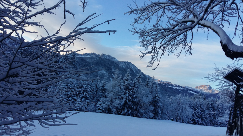 Sonnenaufgang Winter beim Waldhof