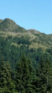 Waidegger Alm am karnischen Höhenwanderweg
