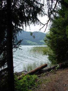 Blick auf den Weissensee von Ufersteig Ostufer