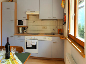 Kitchen of the apartment Enzian apartments Waldhof
