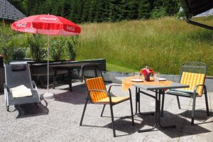 terrace of the family apartment Enzian - apartments Waldhof Carinthia