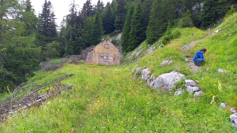 Ruine Malurch