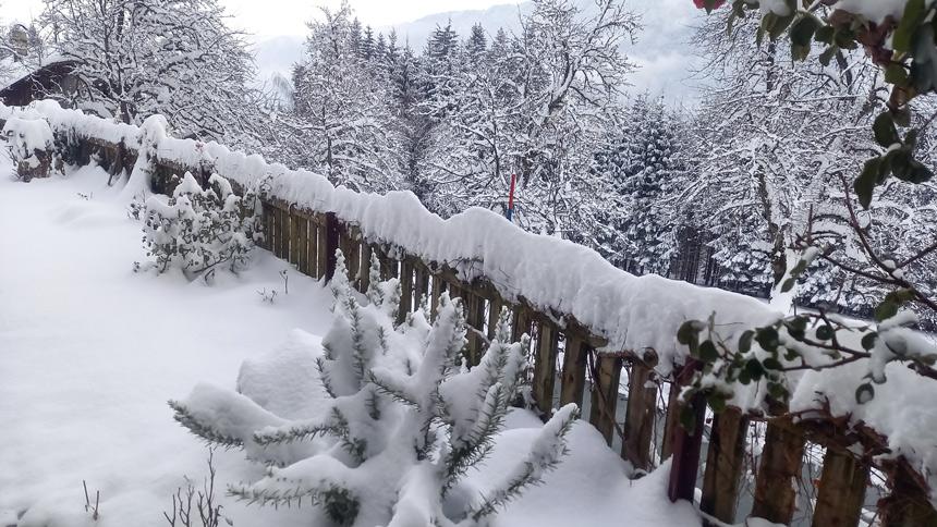 Garten Waldhof im Winterkleid