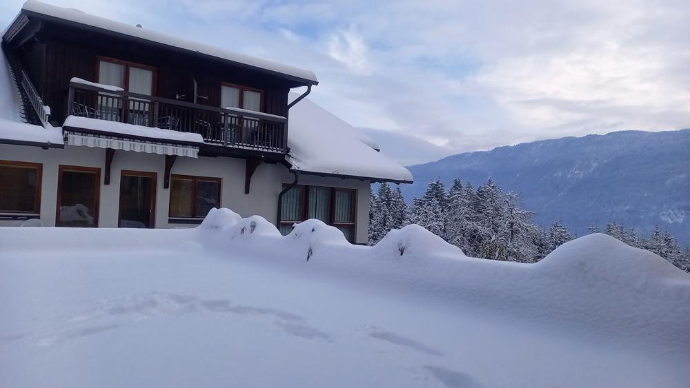 Waldhof im Schnee