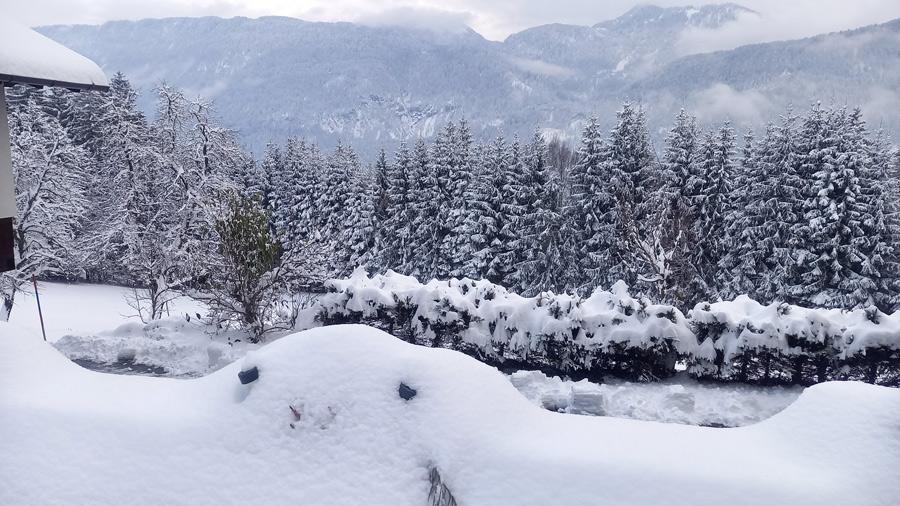Winter im Waldhof