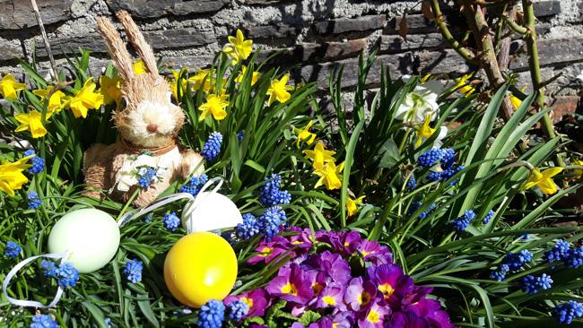 Ostern im Waldhof