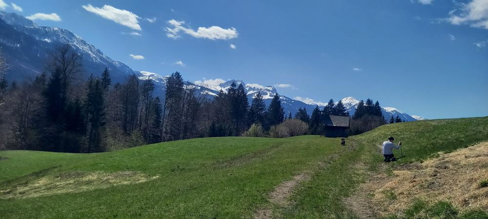 Wanderweg Waldhof Bergl